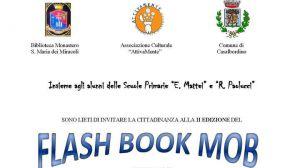 Flash book mod