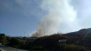 Incendio civeta