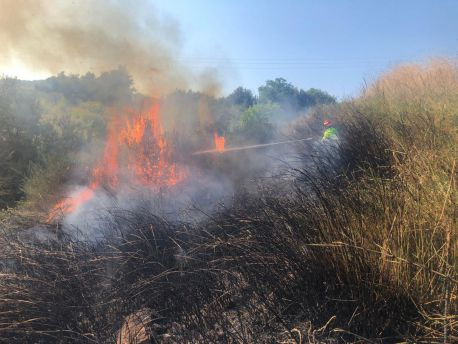 Incendio Lentella 1 Agosto