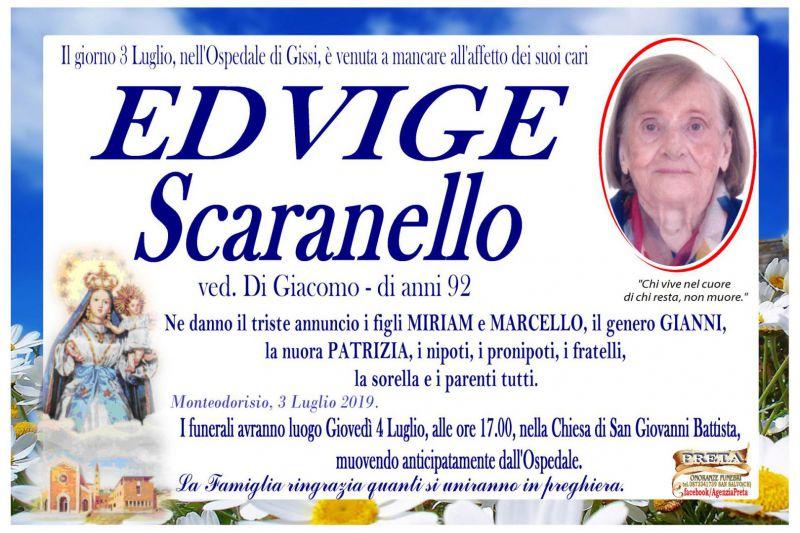 Edvige Scaranello 3/07/2019